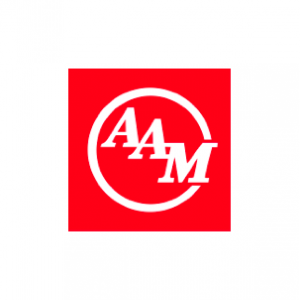 American Axle & Manufacturing 13.png